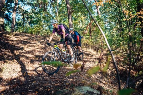 Gesund-und-fit-durch-Radfahren