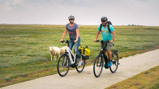 E-Bike-Trekking