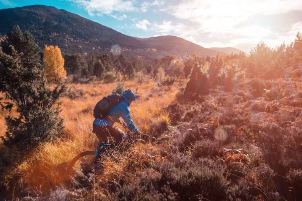 bikerblau-vegetation-highlands-schottland3KNipfNvSxYlL