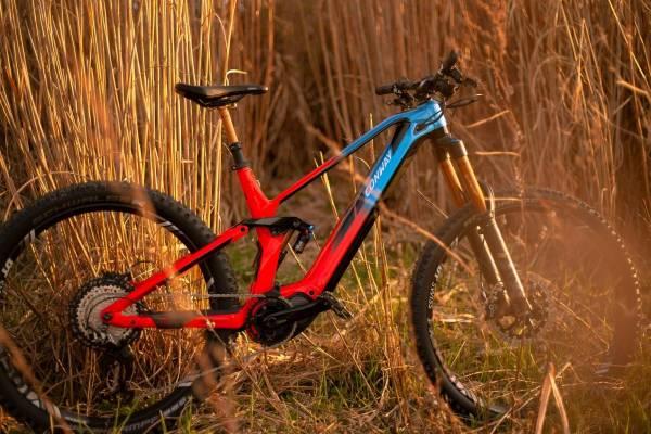 Mullet-Bike
